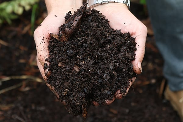 Make your own composter and start composting