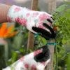 Gardening-Gloves-Rose-4