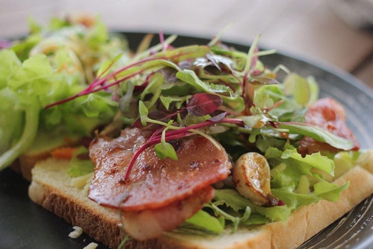Small packs a punch! Micro Greens in the Spotlight