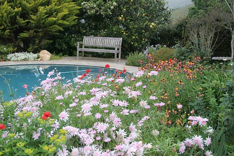 General Yard Stuff To Make Your Garden Smile